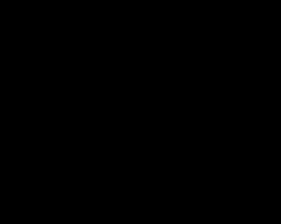 黒いレースの素材